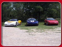 Repkas' Photos Corvettes